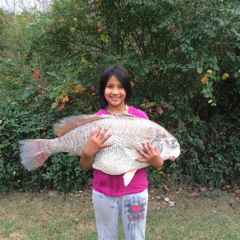 Family outdoors oklahoma weekly fishing report 10 29 2015 for Lake hefner fishing report