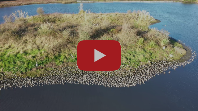Booterstown Nature Reserve Drone 4