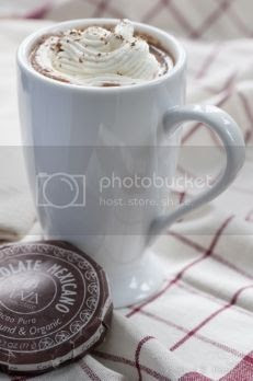 Adults Only Spiced Hot Chocolate