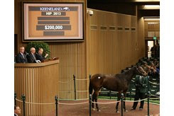 Princessof the Nyl in the ring at the Keeneland November Sale