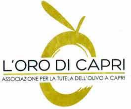 A scuola di assaggiatori di olio d'oliva con i soci ed esperti de L'Oro di Capri.