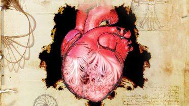 Da Vinci's Heart