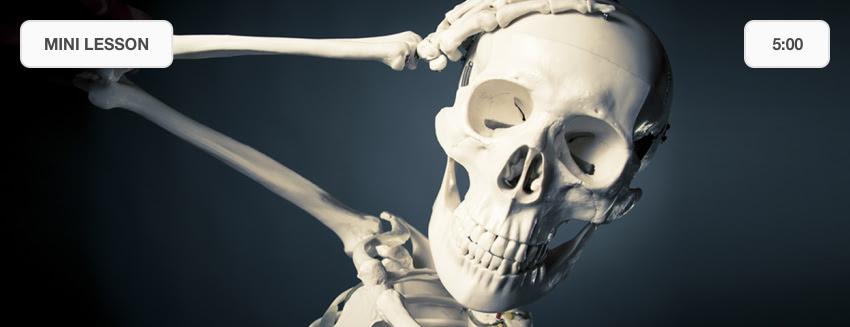 Mystery Doug Skull