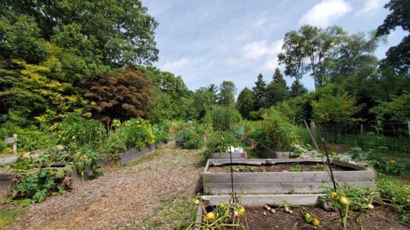 Beautiful garden beds at Hancock Woodlands Park