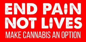 End Pain, Not Lives