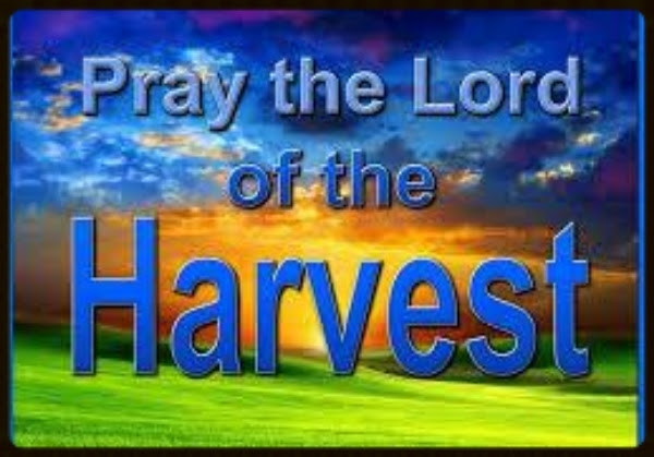 Pray-to-the-Lord-of-the-HARVEST.jpg