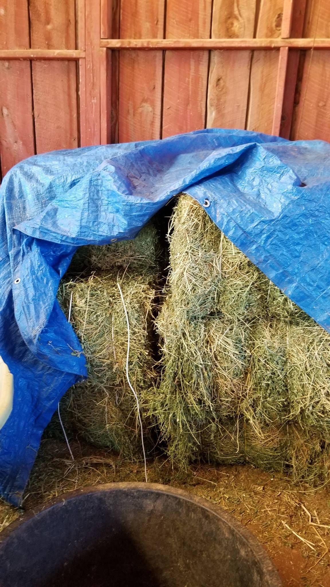 20181022 six bales alfalfa