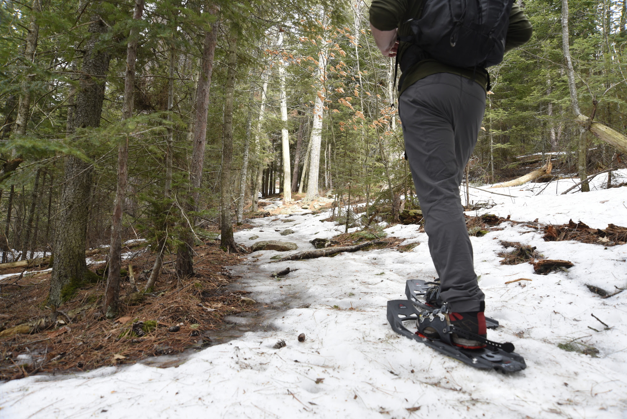 Hiker wearing snowshoes on snowy trail