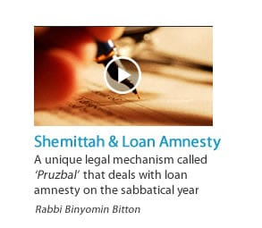 Shemittah and Loan Amnesty