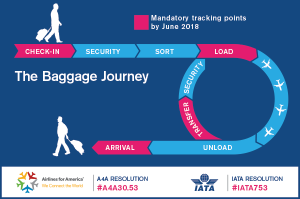 baggage_infographic_web