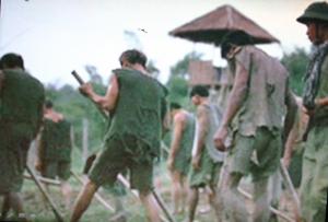 nazi-vietnam-2