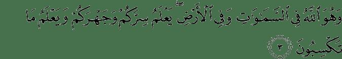 Surat Al An'aam