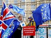 Protibrexitové demonstrantky postávají před budovou parlamentu v Londýně. (15....