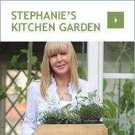 Stephanie's Kitchen Garden
