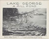 AThe Mill Pond | The Adirondacks Conspiracy