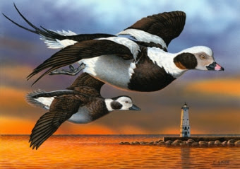 2014 Michigan duck stamp