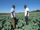 agricultura-140x105.jpg