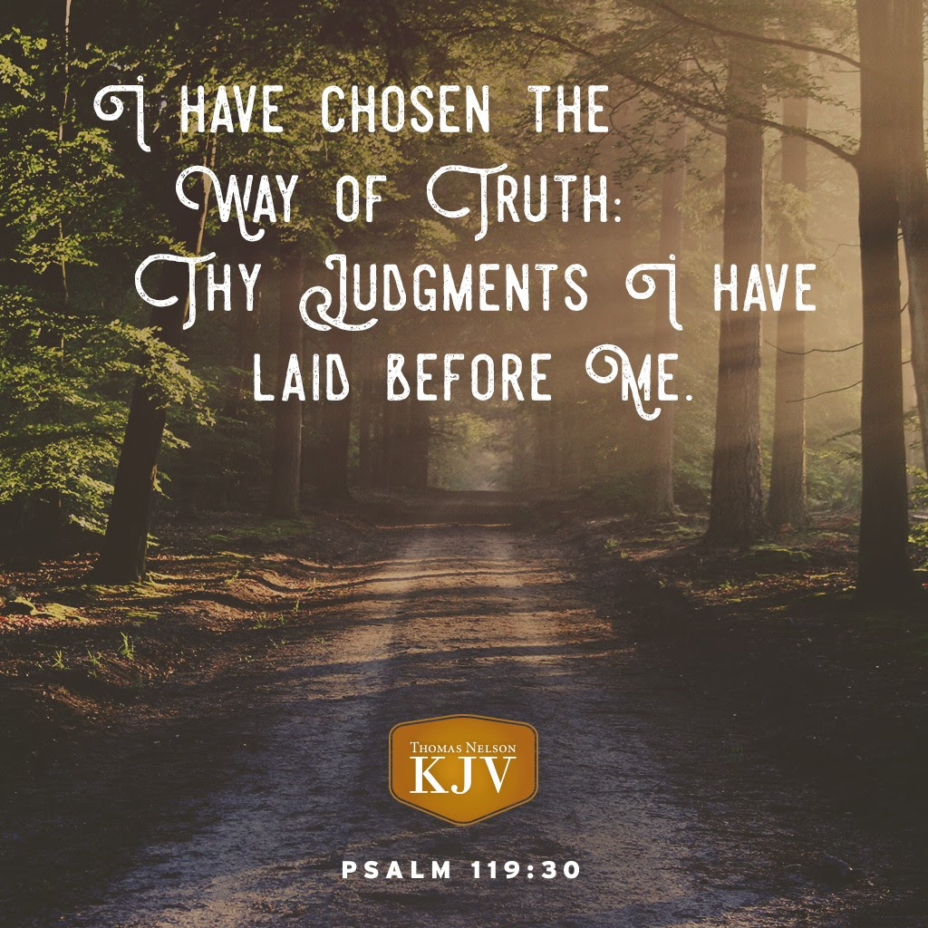 30 I have chosen the way of truth: thy judgments have I laid before me. Psalm 119:30