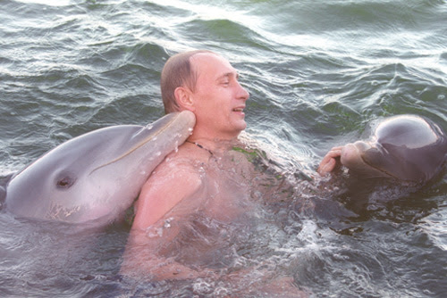 vladimir-putin-swimming-with-dolphins-1