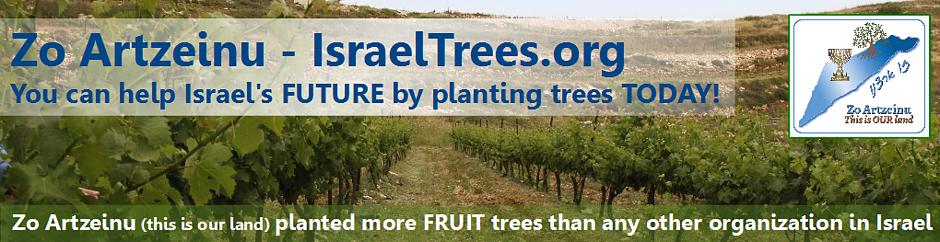 trees-banner-1