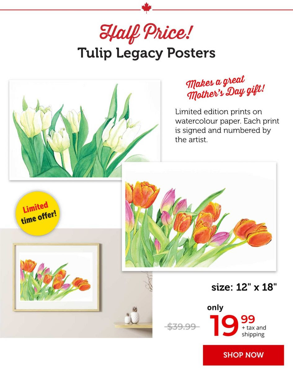Tulip legacy posters