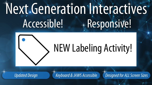 new-label-activity-email-2019