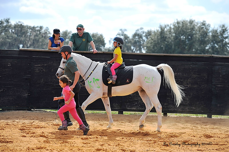 Al-Marah Arabians Offer New Equestrian Activities for 2015