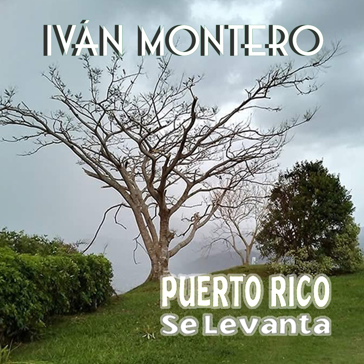 Puerto Rico Se Levanta - CD Cover JPEG