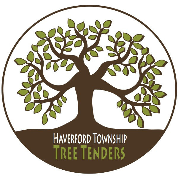 Tree Tenders Logo