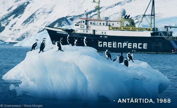Antártida, 1988