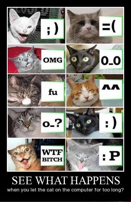 Cats, They Love Emoji