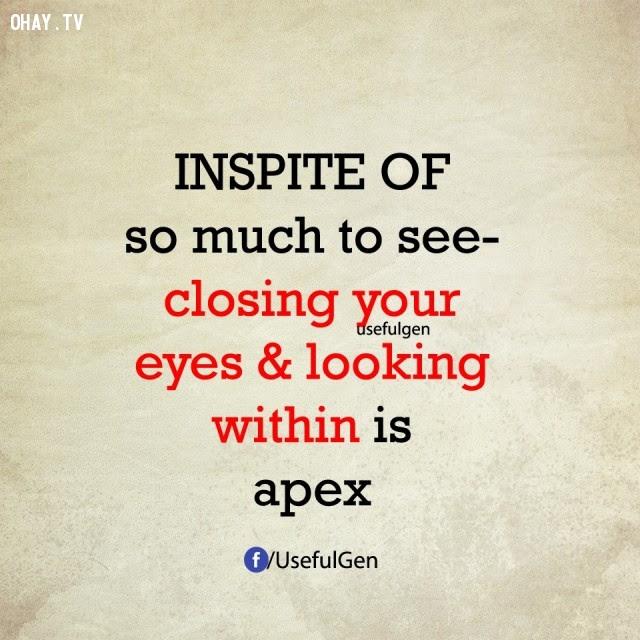 5. Mặc dù có rất nhiều thứ để nhìn nhưng nhắm mắt lại và nhìn sâu bên trong mới là đỉnh cao. ,nghịch lý cuộc sống,điều nghịch lý lại vô cùng có lý,suy ngẫm