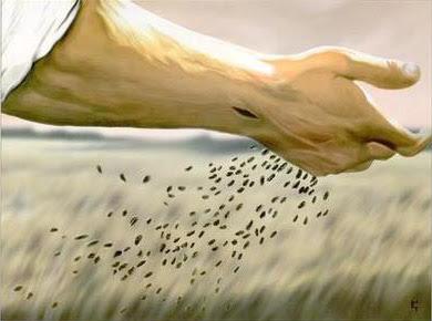 """Znalezione obrazy dla zapytania zcze: """"Z czym porównamy królestwo Boże lub w jakiej przypowieści je przedstawimy? Jest ono jak ziarnko gorczycy; gdy się je wsiewa w ziemię, jest najmniejsze ze wszystkich nasion na ziemi. Lecz wsiane, wyrasta i staje się większe od innych jarz"""