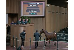 The Constitution colt consigned as Hip 2080 tops the sixth session of the Keeneland November Sale