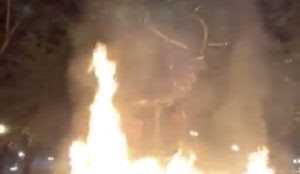 No, They're Not Stupid: Why Leftists Destroyed A Statue of an Elk in Portland