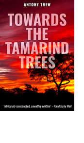 Towards the Tamarind Trees
