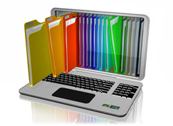 Do you have a system for keeping your digital files