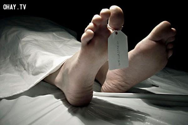 1. Chỉ sau 4 phút ngừng hơi thở cuối cùng, cơ thể người bắt đầu bị phân hủy. ,những điều thú vị trong cuộc sống,sự thật về cơ thể người