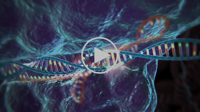 Genome Editing with CRISPR-Cas9