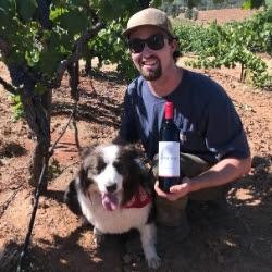 Spencer in Vineyard