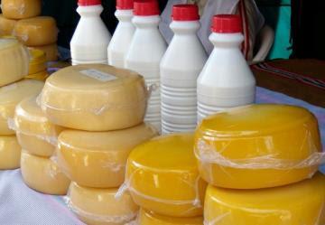 El 43% de la producción nacional de leche se destina a la elaboración de quesos y derivados lácteos