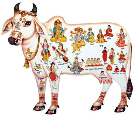 Kerala - 8 'Gau Rakshaks'  arrested for spoiling meat, disrupting Easter celebrations