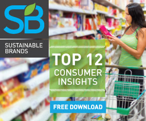 Top 12 Consumer Insights | Free Download