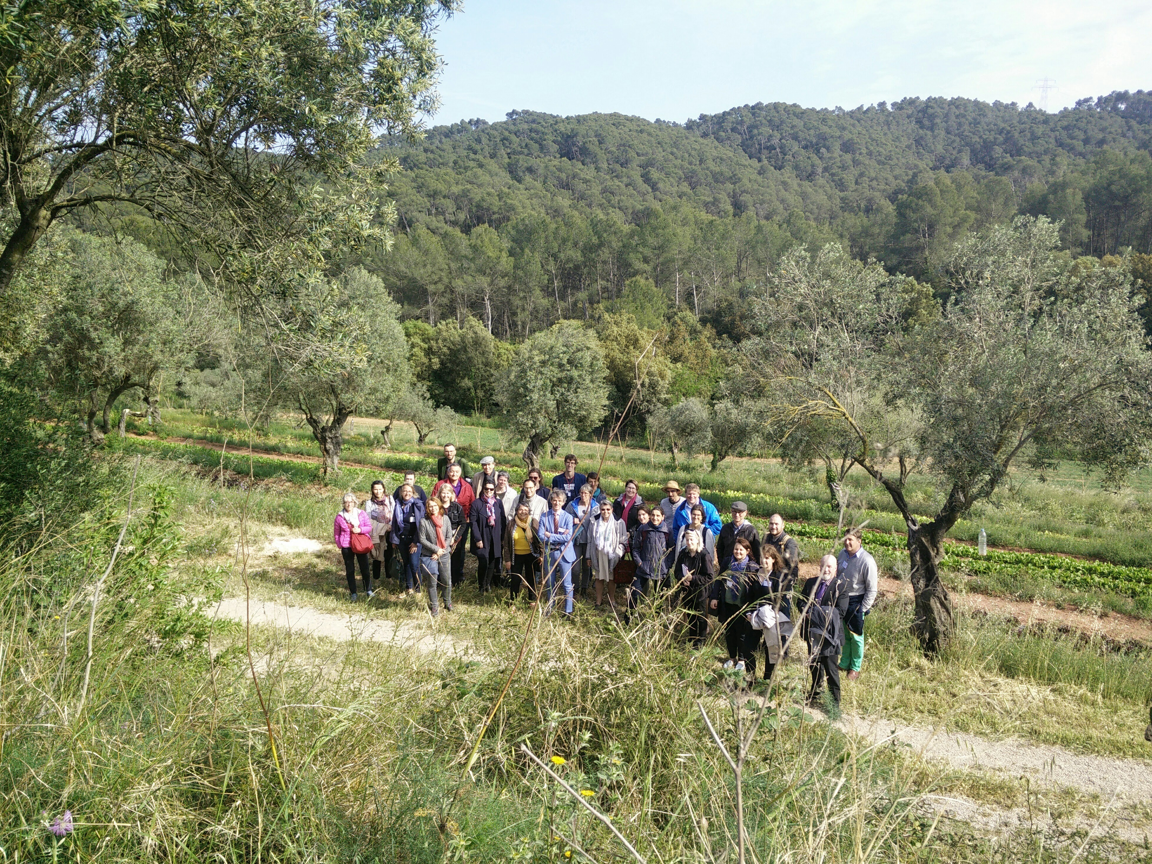 Participants in rural regeneration project on field visit