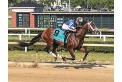 Mr. Money wins his fourth consecutive graded stakes in the 2019 West Virginia Derby