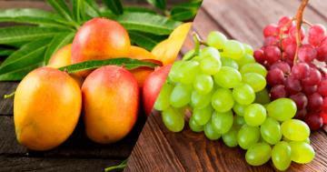 Exportaciones de fruta peruana a México crecieron en valor 33% en 2020
