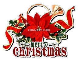 Image result for Poinsettia animated