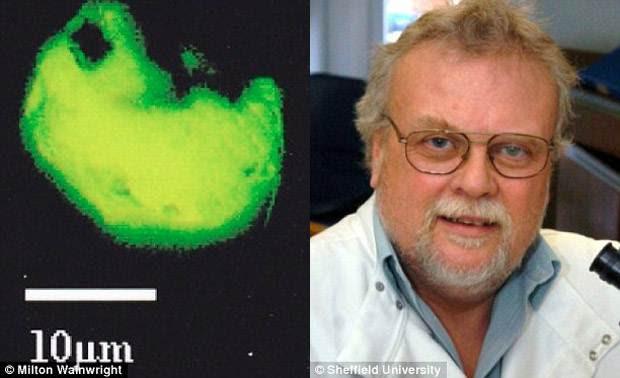 alienlife1 - Científico dice haber encontrado nuevas formas de vida alienígena a 40km del suelo