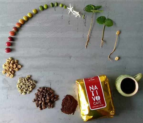 Một chiếc hạt trải qua hành trình dài để đến được tách cà phê của bạn.