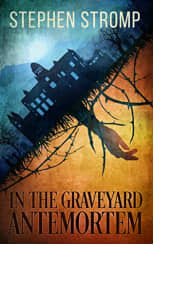 In the Graveyard Antemortem by Stephen Stromp